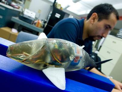 Un robot qui nage en ondulant comme un poisson