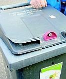 En Angleterre les ordures ont des puces (qui grattent)
