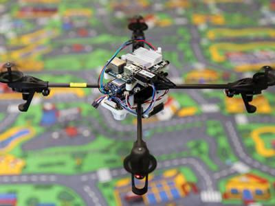 Drones, protection d'une espèce en voie d'extinction