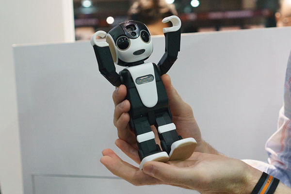 RoboHon reconnaît son utilisateur grâce à la caméra intégrée dans son visage.