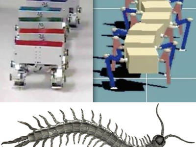 Advantage of straight walk instability in turning maneuver of multilegged locomotion: a robotics approach
