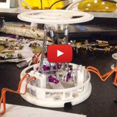 Robot « GIFfeur » à commande vocale avec Raspberry Pi & Arduino