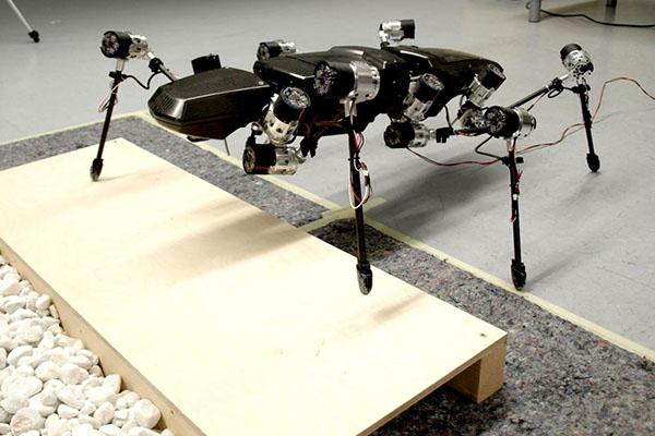 Hector le phasme, premier robot conscient de lui-même