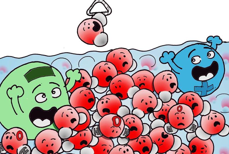 Un seul ion perturbe un million de molécules d'eau