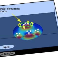 Micro-vortex de vent acoustique. Le vent acoustique (acoustic streaming) créé par la membrane vibrante produit dans le liquide un écoulement qui entraine les microbilles vers les ventres de vibration.